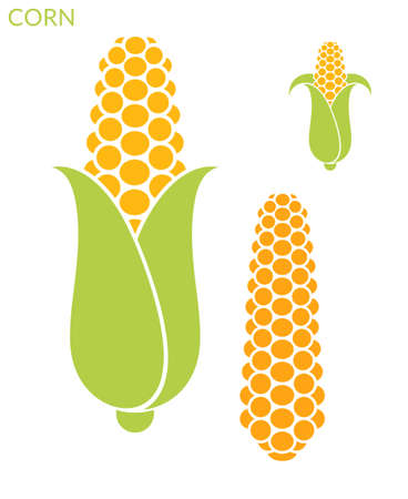 vector set: Corn. Set