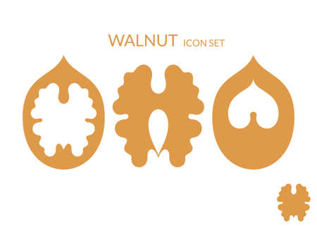 walnut: Walnut. Icon set Illustration