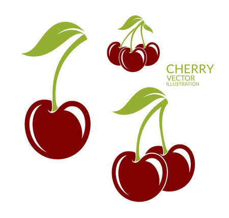 cherries isolated: Cherry. Isolated berries on white background Illustration