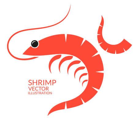 prawn: Shrimp