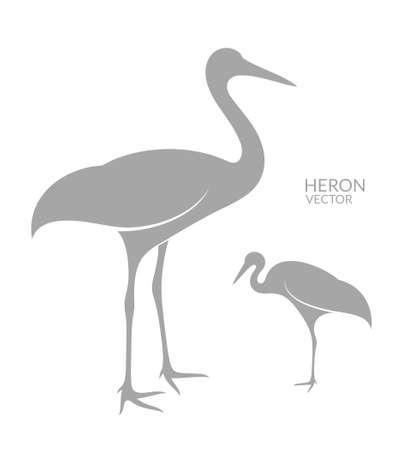 water bird: Heron. Isolated bird on white background Illustration