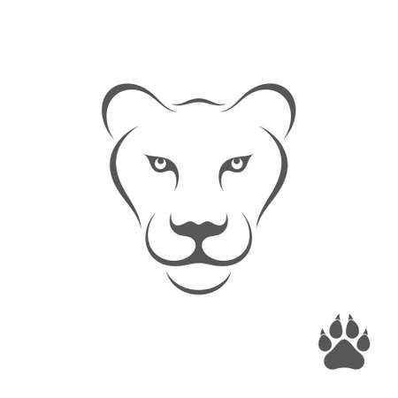 lioness: Lioness with paw print