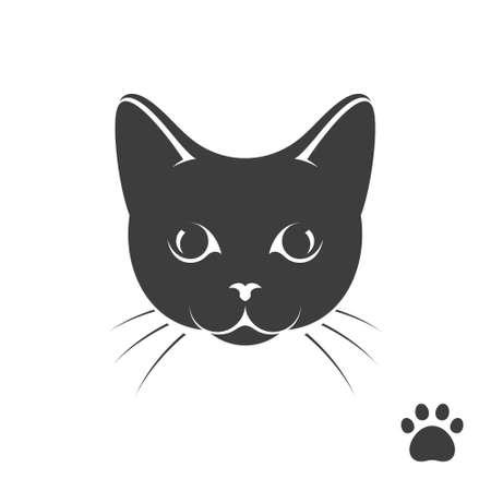 gatito negro con la impresión de la pata