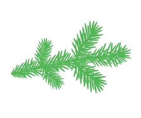 Rama de árbol de abeto  Ilustración de vector