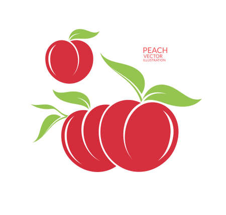 greengrocer: Peach. Isolated fruit on white background Illustration