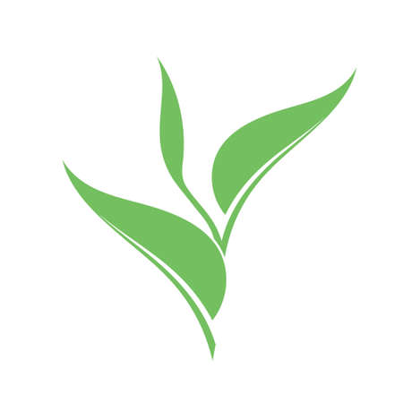 sapling: Sapling. Vector illustration