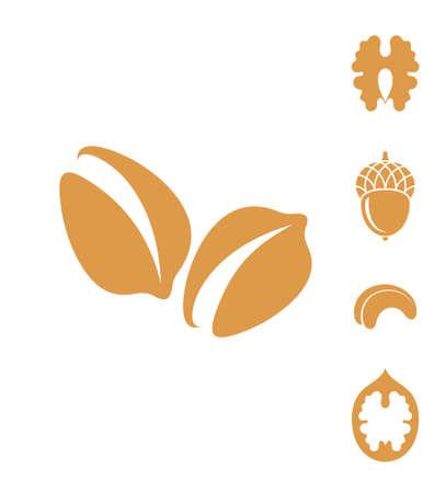 Nuts. Vector illustration