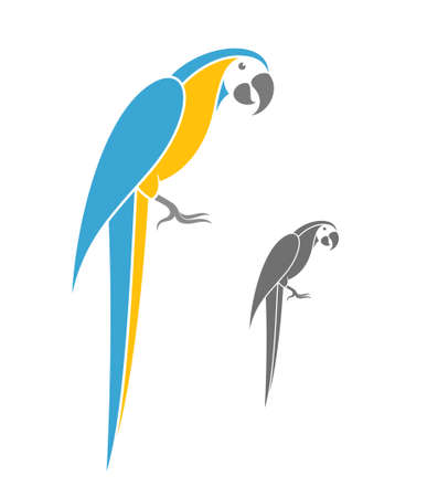 macaw: Macaw parrot. Vector illustration