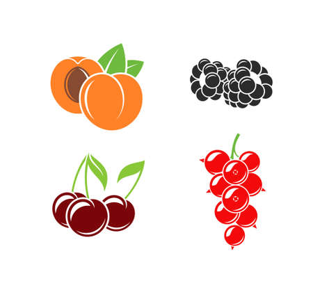 Berries and fruit.