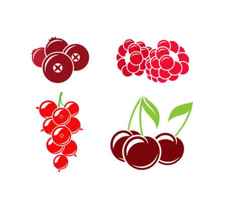 Rote Beeren auf weißem Hintergrund
