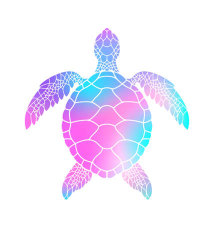 Colorful turtle. Vector illustration