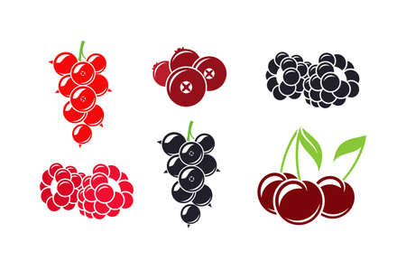 Fresh berries. Isolated raspberry currant cherry cranberry and blackberry on white background Vettoriali