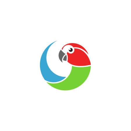 Macaw parrot Isolated parrot on white