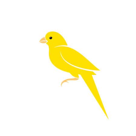 Canary bird.