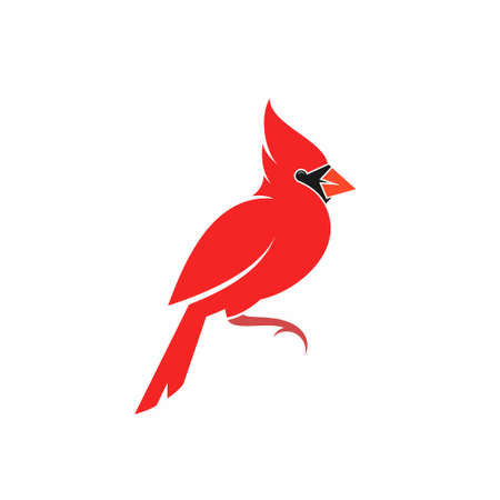 Northern cardinal bird on white Illustration