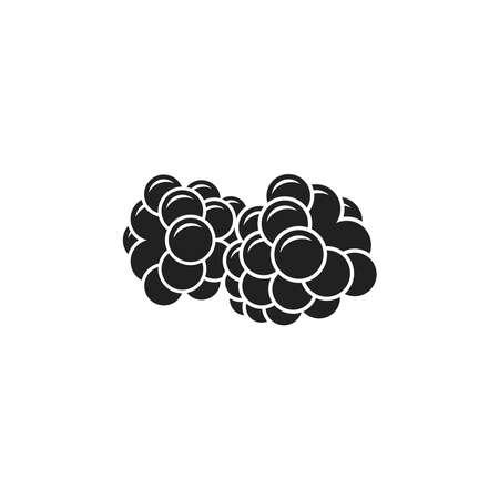 Blackberry on white  イラスト・ベクター素材