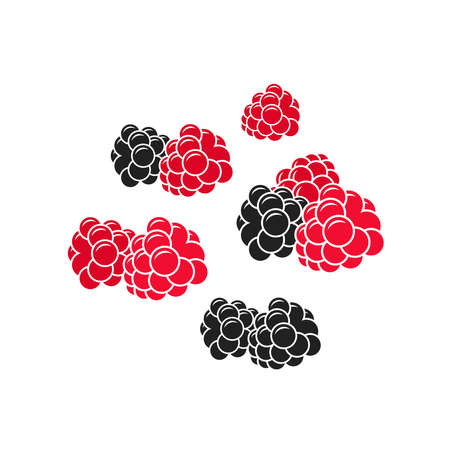 Fresh berries. Juicy raspberry and blackberry on white background