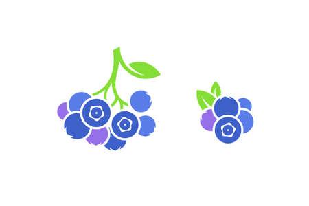 Blueberry Fresh berries on white