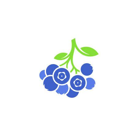 Blueberry on white