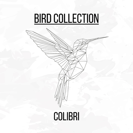 Colibri bird geometric lines silhouette isolated on white background vintage design element Ilustração
