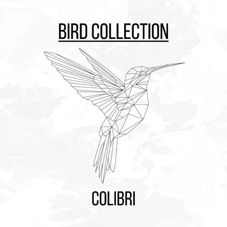 Colibri bird geometric lines silhouette isolated on white background vintage design element Illustration