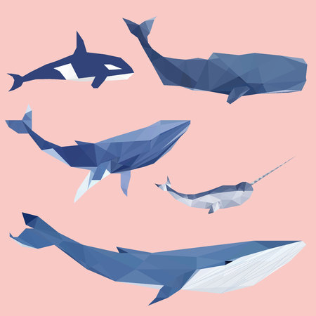 Set of geometric pantone whales isolated on a background vintage design element