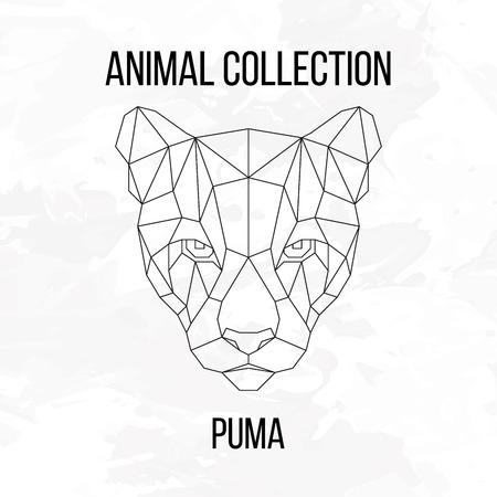 puma: Geometric animal puma head line silhouette isolated on white background vintage design element