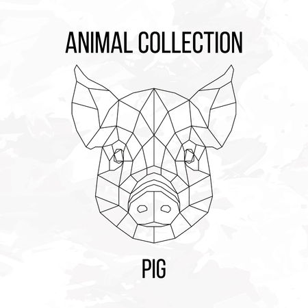 sow: Pig swine hog sow head geometric lines silhouette isolated on white background vintage design element Illustration