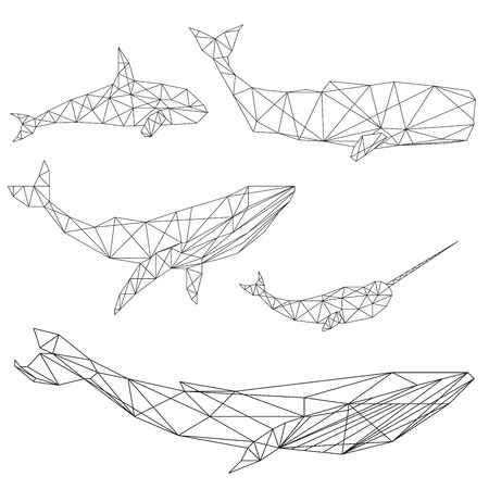 Set of geometric whales isolated on white background vintage design element