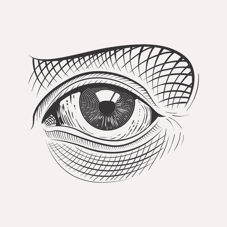 Engraved eyehighly detailed hand drawn isolated on white background Illustration