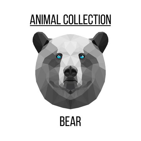 Geometric vector animal blue eyes bear head background