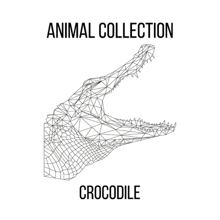 Crocodile head geometric lines silhouette isolated on white background vintage vector design element illustration