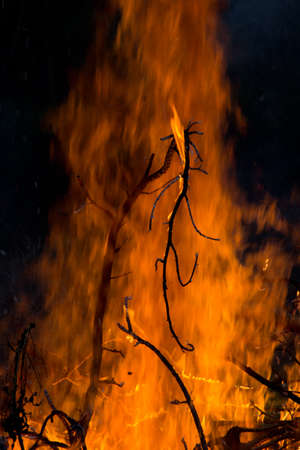 Silhouetted burning twigs against flaming backdrop by night Stock Photo
