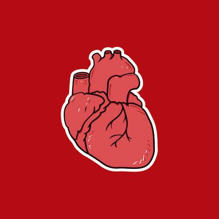 Heart Anatomy Cartoon Vector Illustration