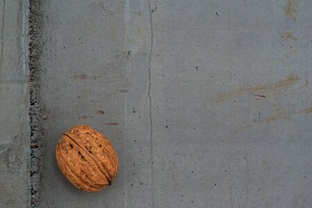 Walnut shell on grey concrete texture representing healthy food