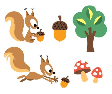 Eekhoorn eikel ontwerp elementen Stock Illustratie
