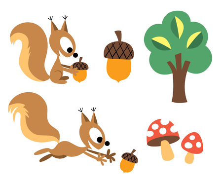 isolated squirrel: Squirrel   acorn design elements