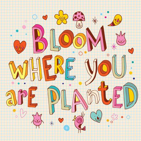 どこに植えられている花