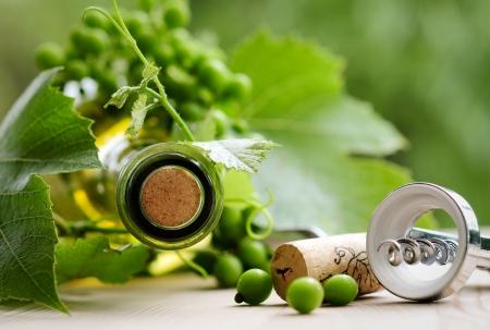 Fles wijn met bladeren