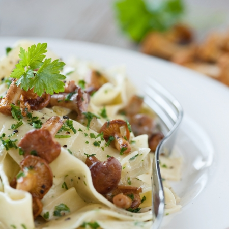 pasta with fresh chanterelles  photo