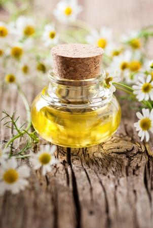 chamomile oil Banque d'images