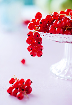 Red currants on a small pie plate Stock Photo - 85950948