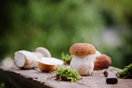 Porcini mushrooms Stock Photo - 85950950