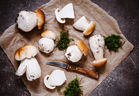 Fresh mushrooms on rustic ground