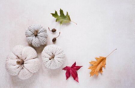 Pumpkin, gourds, wool, crochet, crochet, autumn, decoration, decorative, halloween, elegant, minimal, copy space, banner, header, background, neutral, craft, handwork, home, bright, autumn decoration,