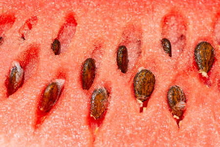 closeup by macro lens of ripe fresh watermelon with seeds, closeup to seeds Stock Photo - 104087685