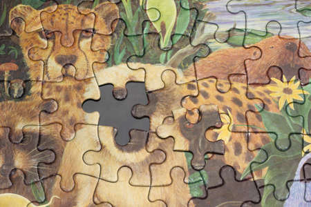 Close up to the last piece of puzzle game. the face of animal Stock Photo