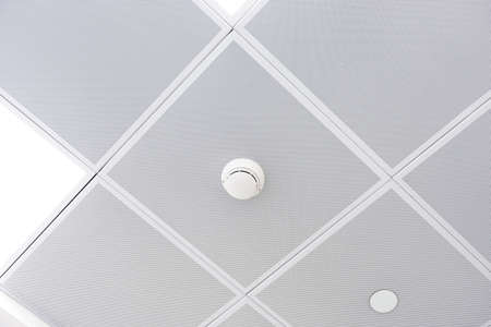 Fire alarm and ceiling mounted smoke detector