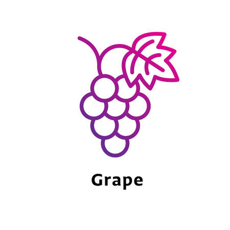 Grape written black color with amazing purple gradient icon Illustration