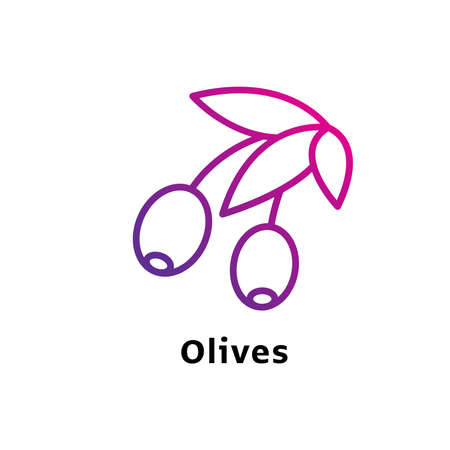 Olives written black color with amazing purple gradient icon Illustration